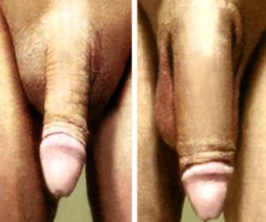 http://asoka-shop.com/obat-pembesar-penis-vigrx-plus-usa/