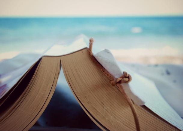 Mis lecturas de verano