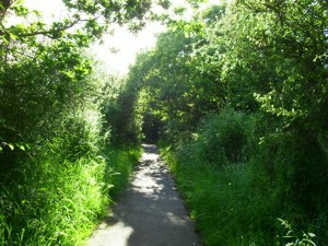 Smooth surface path, Wheelchair Travel, Wheelchair Walk, Easy Access Walk West Itchenor, Chichester, Sussex