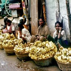 Ação contra a fome, compartilhe e alimente a esperança