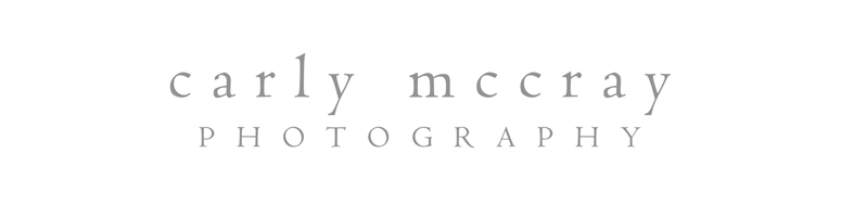 Carly McCray Photography Blog >> Milwaukee + Madison Wisconsin Wedding Photographer