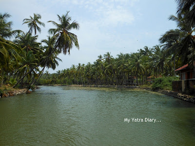 Postcard from Kerala - God's own country