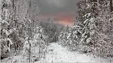 Sfondo invernale-09