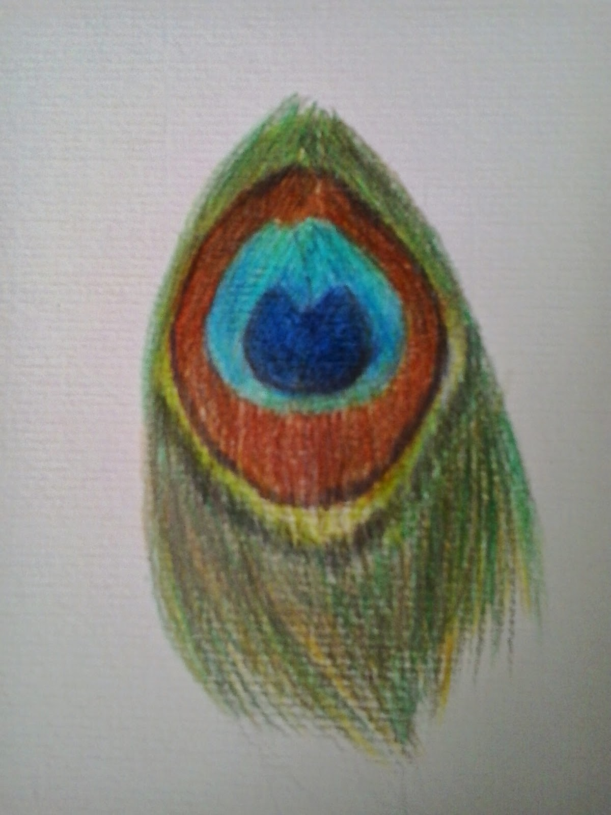 Colored Pencil Feather Color Pencil Drawing