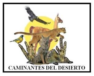 CAMINANTES DEL DESIERTO