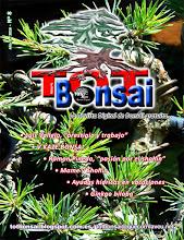 DR 8 TOT Bonsai