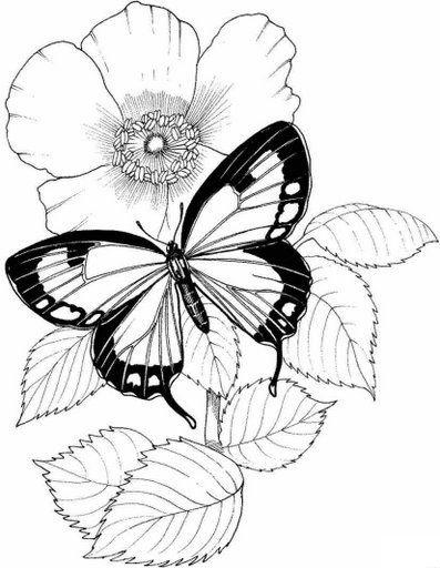 Dibujos y Plantillas para imprimir Mariposas y flores