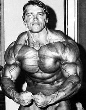 Imagenes de Arnold Schwarzenegger