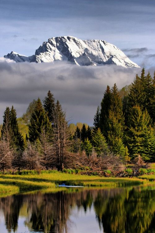 The Socinianized Minor Church - Schwabackers Landing ~ Grand Tetons National Park, Wyoming