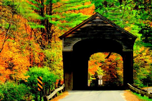 The Boston Press Suite New England Fall Foliage Travel