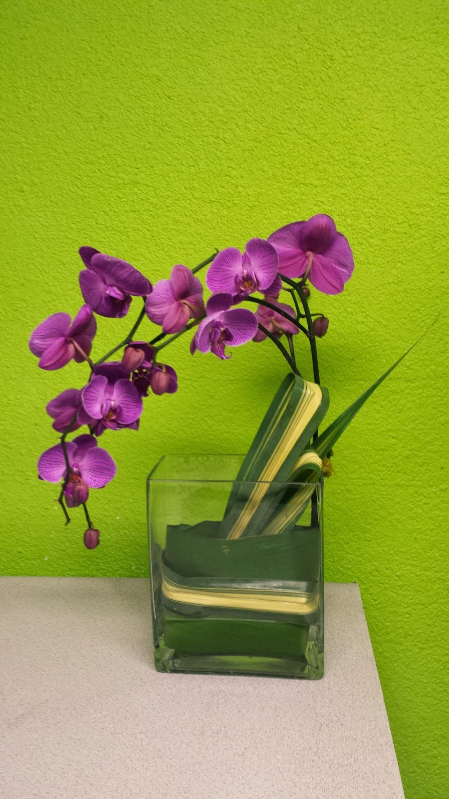 Las Vegas Flowers Premier Event Florists Orchids