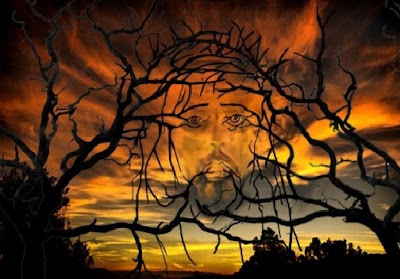 Hidden jesus picture in tree illusion