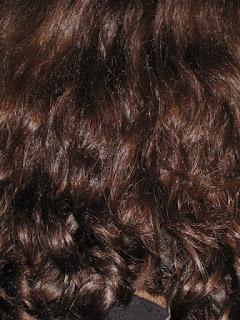 Curly Hair back of head.jpeg
