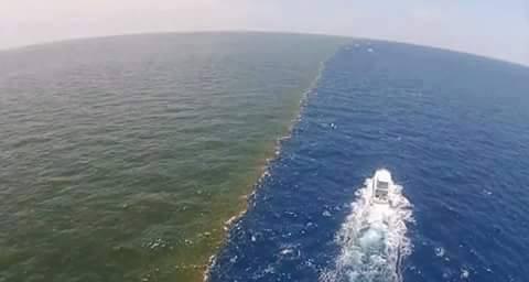 Bukti Kekuasaan ALLAH SWT, Dua Air Laut Ini Tidak Pernah Bercampur