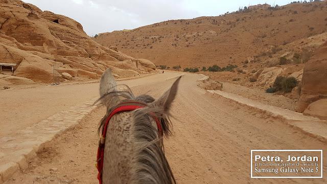Horse Riding Petra Jordan
