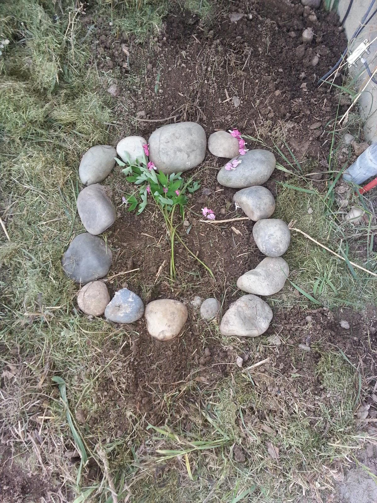burying pets in backyard home design