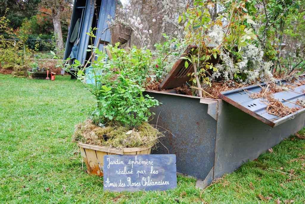 Les amis des roses orl anaises l 39 aro pr sente un nouveau for Au jardin des amis