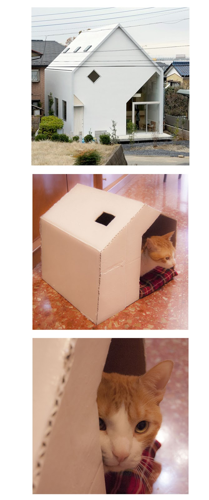 Cat house made with cardboard
