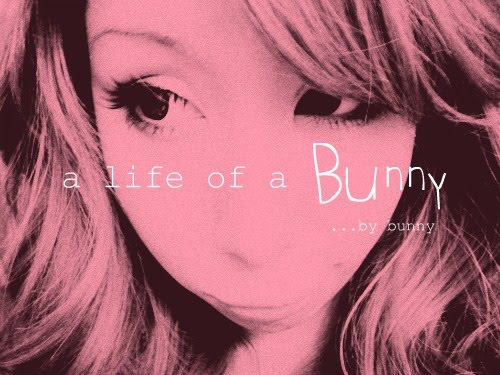 a Life of a Bunny