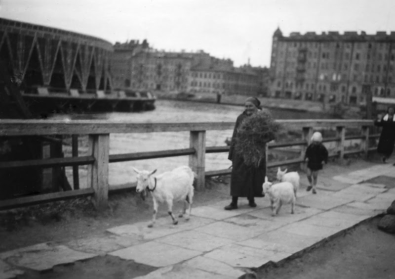 Ленинград 1920-30-х