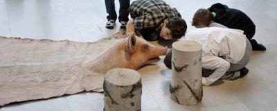 Børn ser nærmere på 'trofæ' af so på gulvet, med skind og hovede
