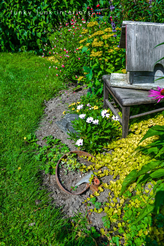 before / How to edge flowerbeds like a pro! via FunkyJunkInteriors.net