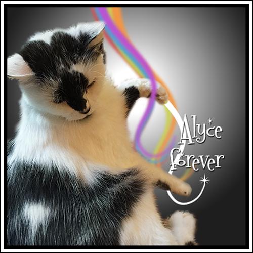 RIP ALYCE