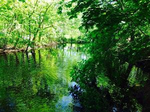 Powwow River