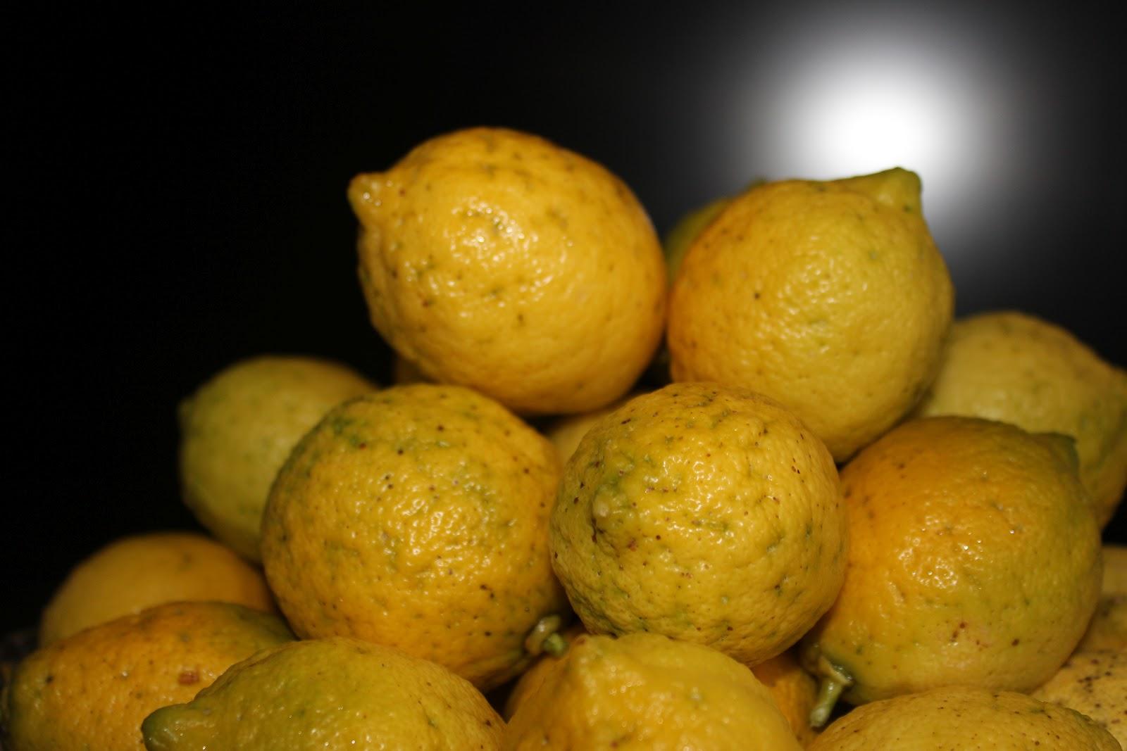Pechugas de pollo al lim n con jengibre - Pechugas de pollo al limon ...