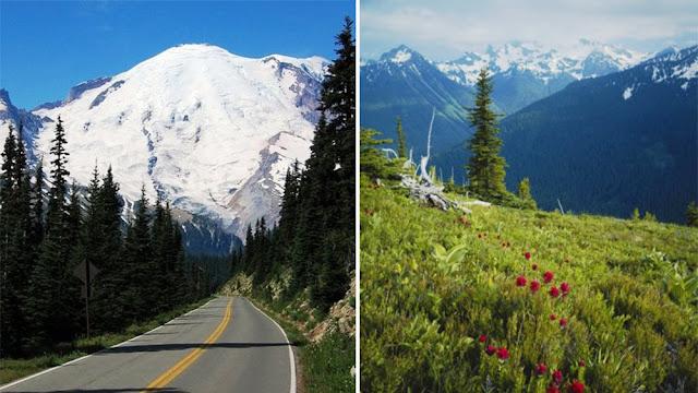 Mount Rainier National Park Tourism, Washington
