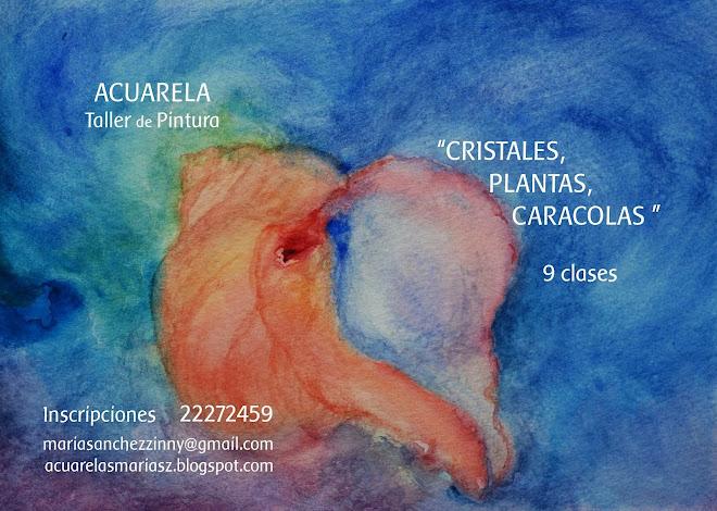 """""""CRISTALES , PLANTAS , CARACOLAS"""""""
