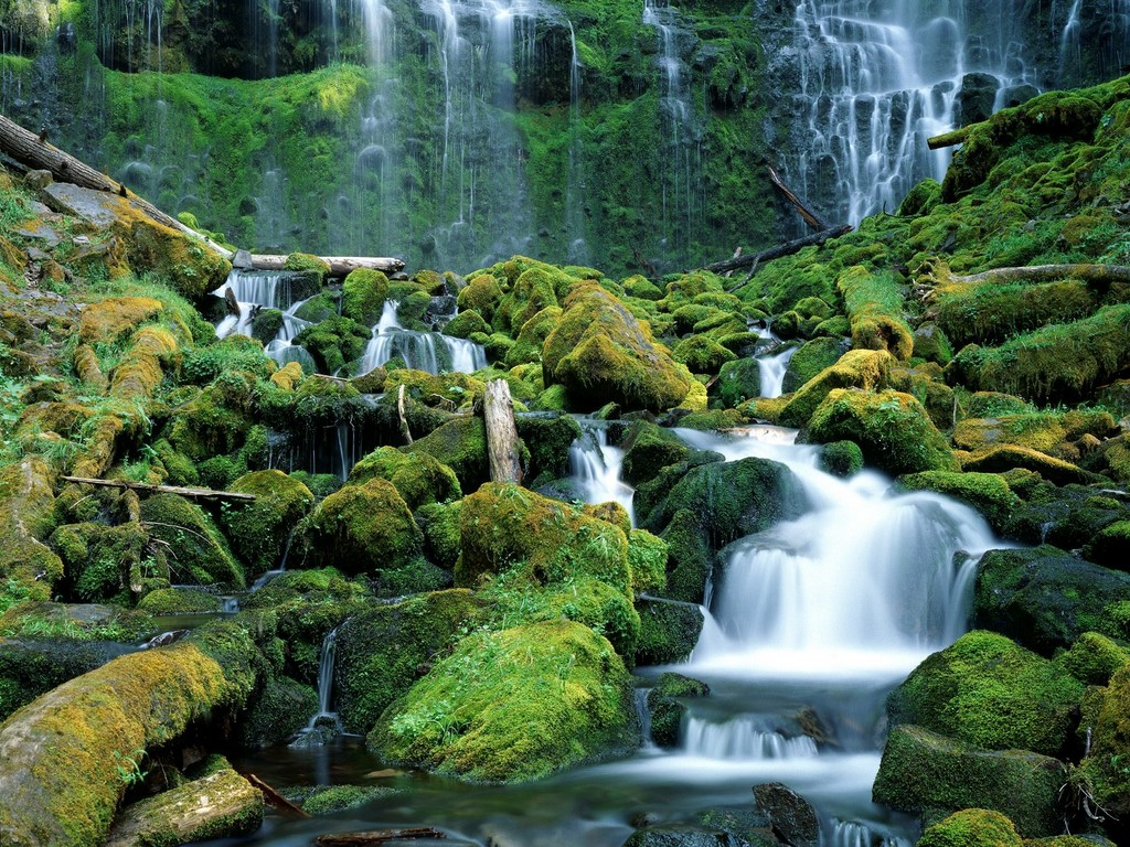 http://3.bp.blogspot.com/-xHsZKq590XA/Tz2GPRmwifI/AAAAAAAAC_8/0AfYYi0bGhE/s1600/Proxy_Falls,_Cascade_Range,_Oregon.jpg