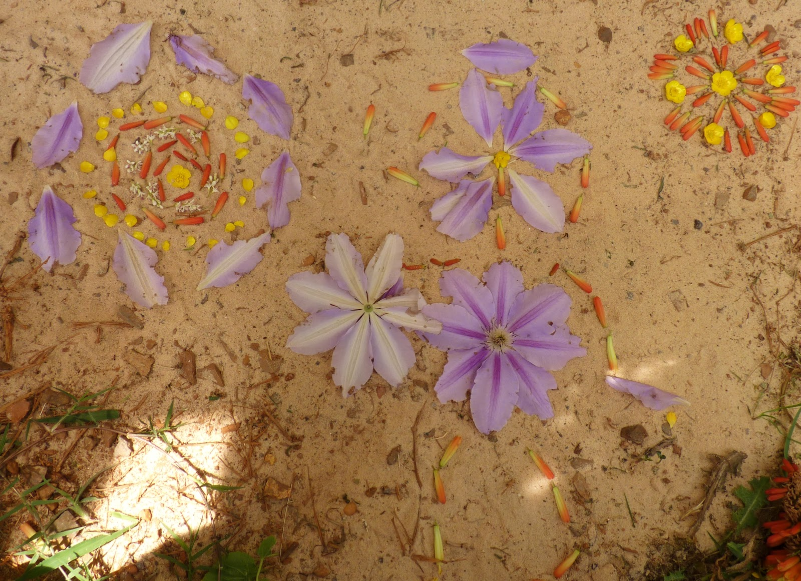 At the Butterfly Ball Flower Mandalas with Kids