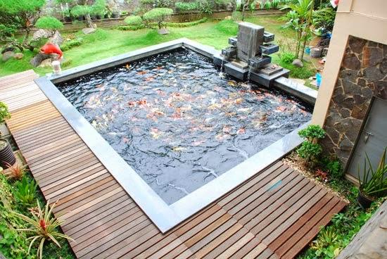 model desain kolam ikan hias depan rumah
