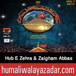 http://www.humaliwalayazadar.com/2015/11/hub-e-zehra-and-zaigham-abbas-nohay-2016.html