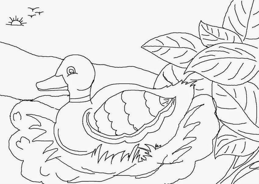 Dibujos De El Patito Feo Para Colorear
