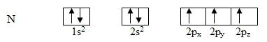 Hund's rule applied to the nitrogen atom