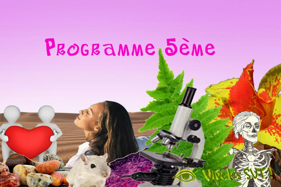 science et vie pdf octobre 2015