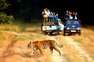 http://uttarakhand-tourpackages.com/weekend-tours/corbett-tour/