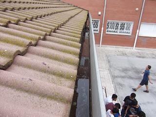 MANTENIMIENTOS DE TEJADOS MADRID