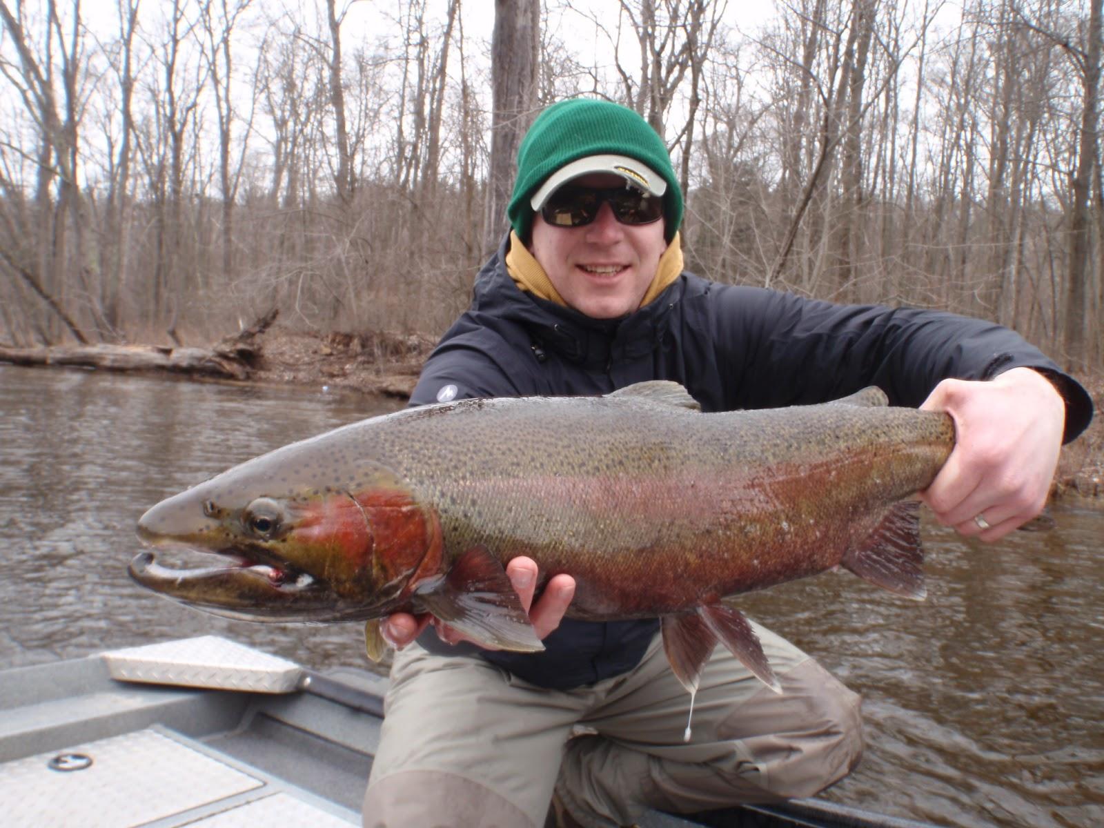 Steelhead fishing the muskegon river in michigan fly for Michigan steelhead fishing