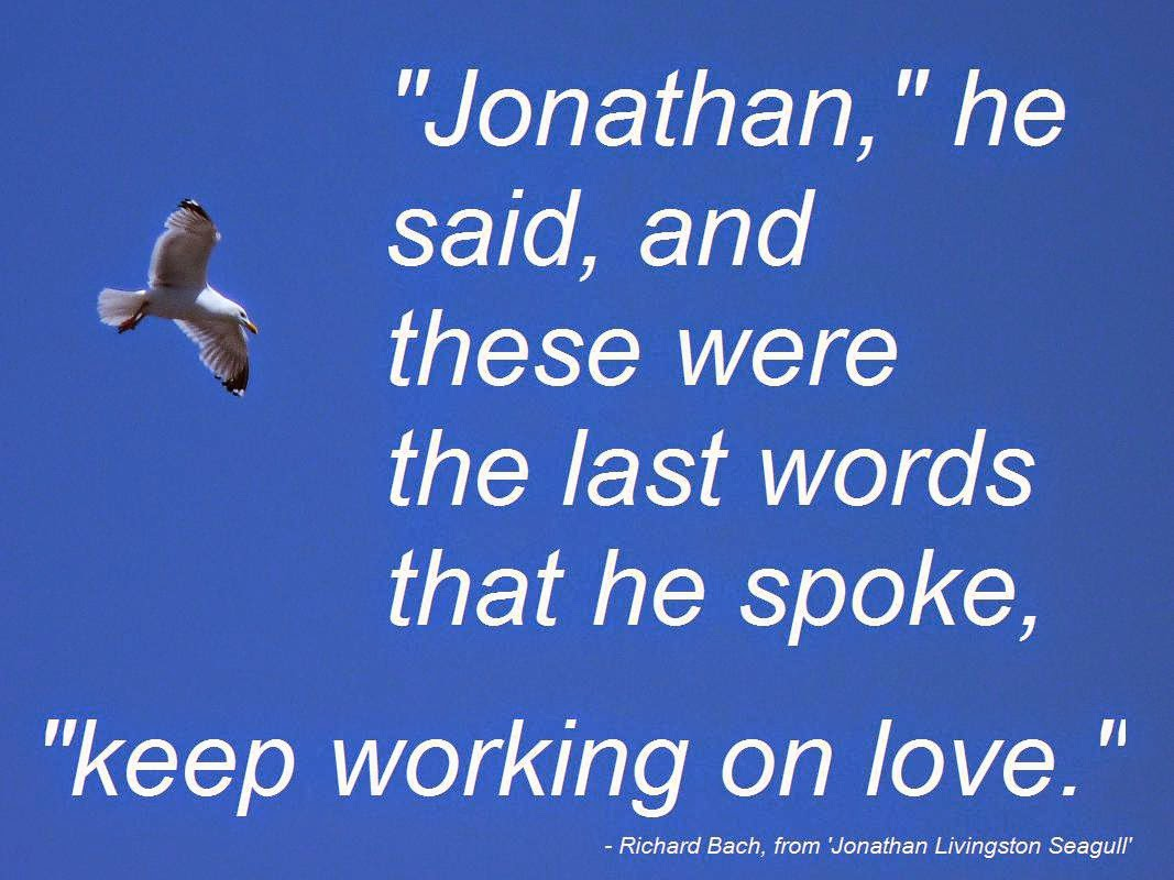 Seagull Wallpaper Livingston Quote Jonathan