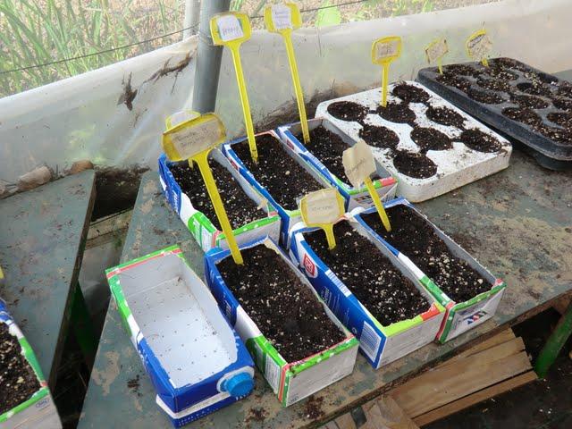 Ecologistas en accion malaga visita a los huertos urbanos - Huerto urbano malaga ...