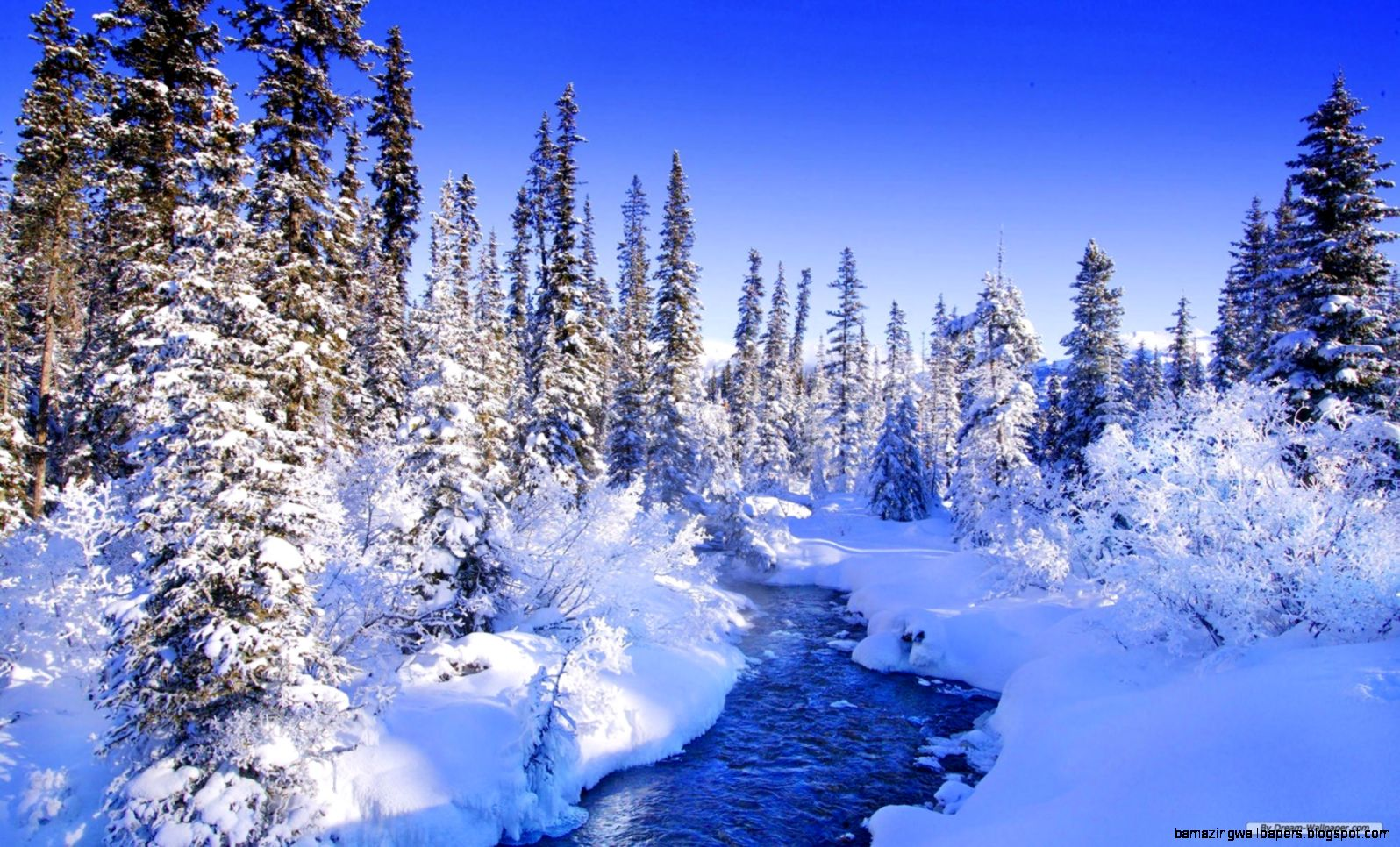 Hd Winter Nature Wallpapers   wallpaper