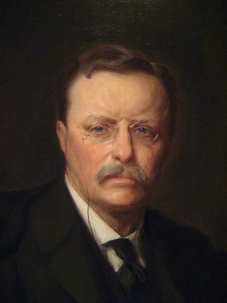 president roosevelt steward of the people New nationalism speech  the american people are right in demanding that new nationalism,  the right of the people to rule by theodore roosevelt.