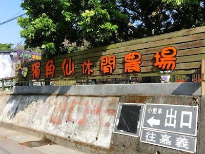 Taiwan's Rhinoceros Beetle Farm, Chiayi