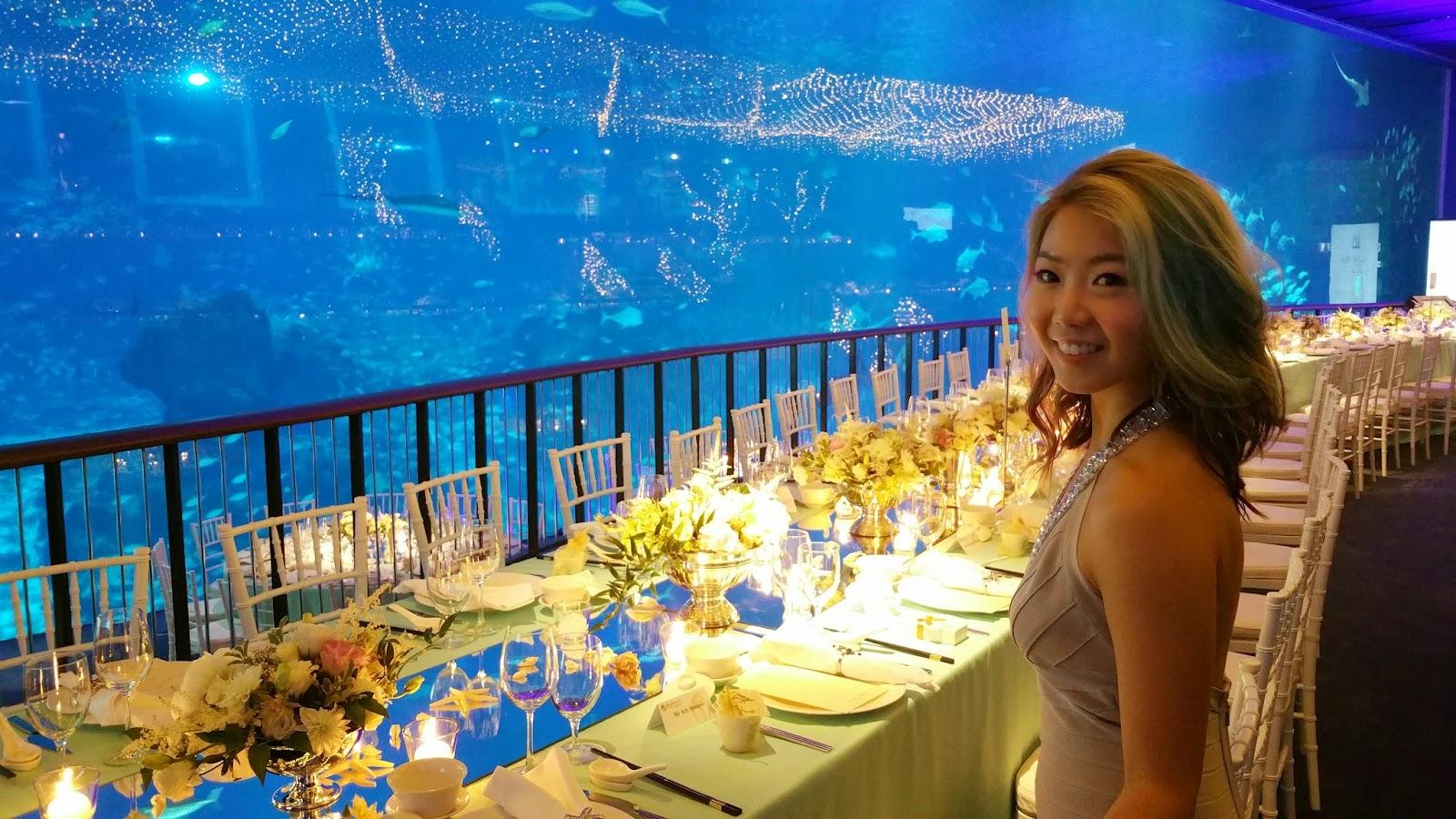 Fish aquarium in johor bahru - Tiffany Chairs Look Better In An Aquarium Than On A Lawn