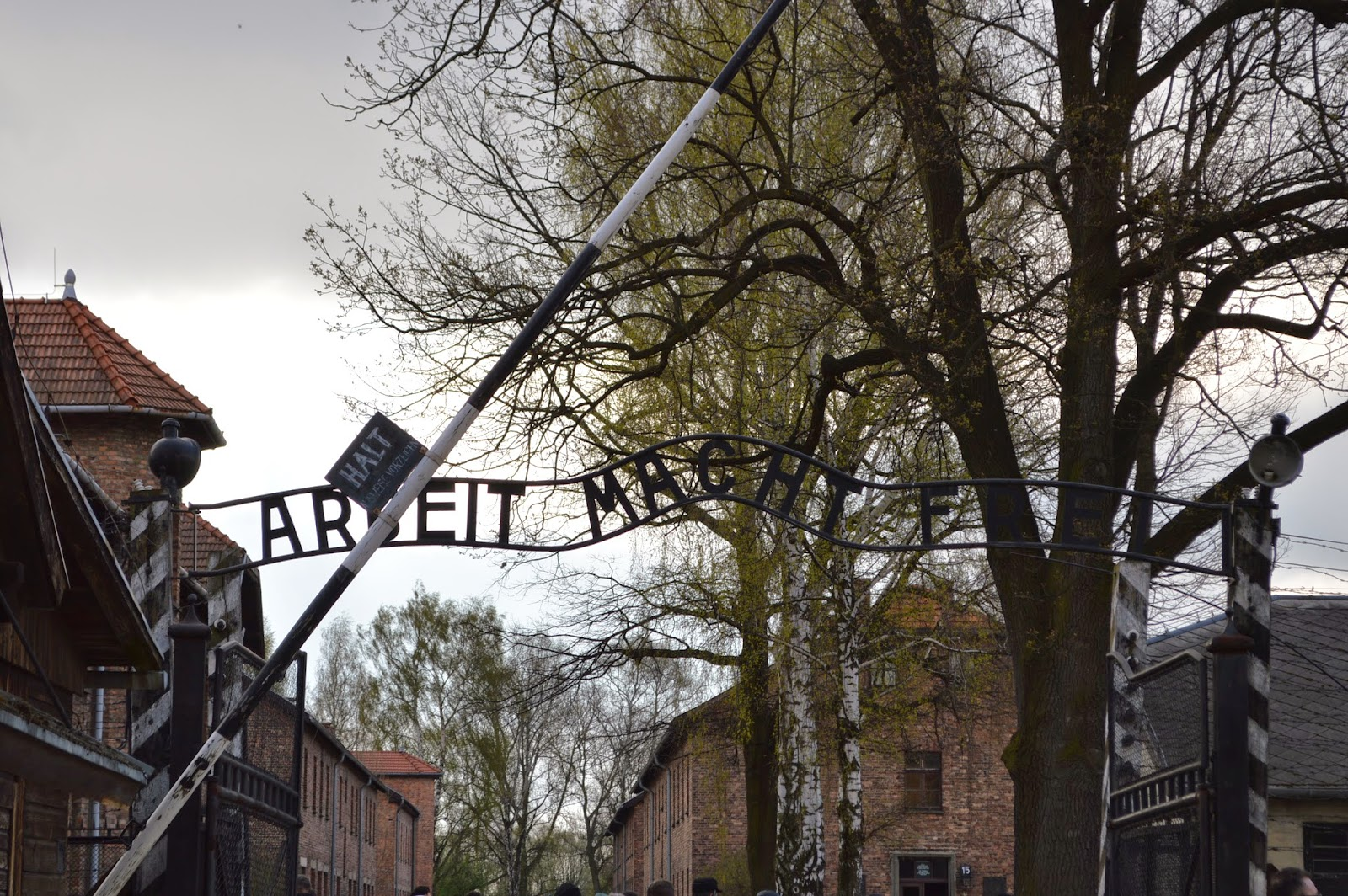 Auschwitz 1 day study tour vs regular group tour in Sept ...