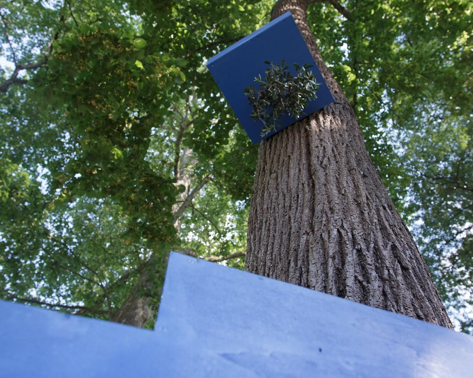 Cahors juin jardins le festival qui cultive l 39 art for Entretien jardin cahors