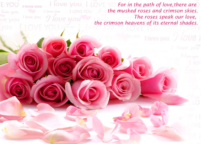 quote of love with pink rose